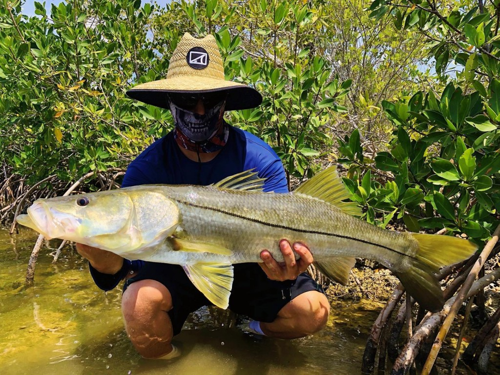 islamorada fishing charters snook