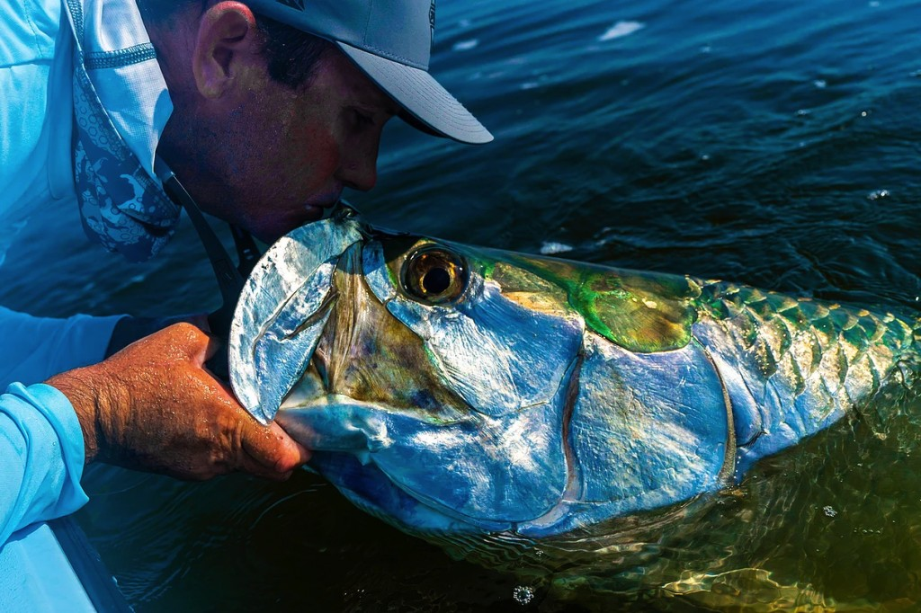 jupiter tarpon fishing guides