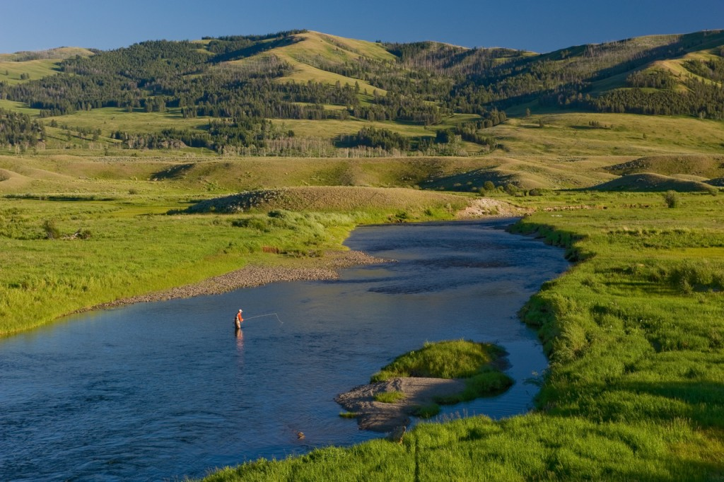 montana trout fishing