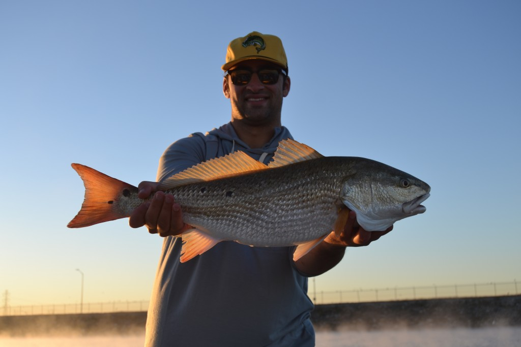 freshwater redfish calaveras lake fishing