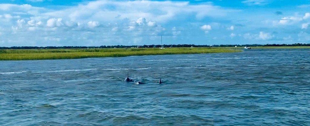 best fishing guides in Charleston sc