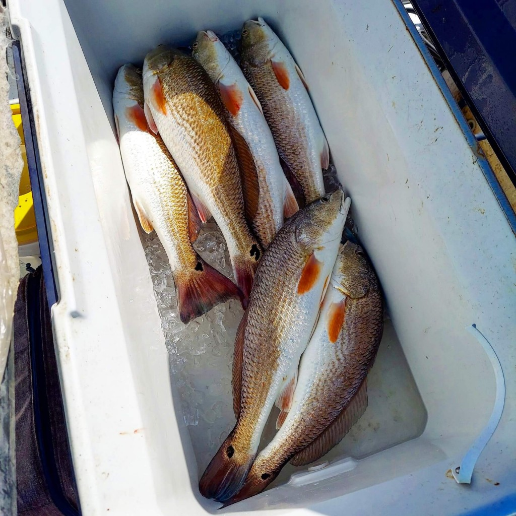 rockport tx fishing guide
