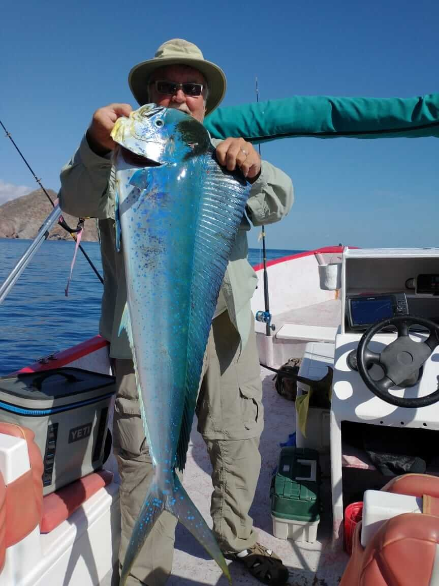 loreto fishing charter