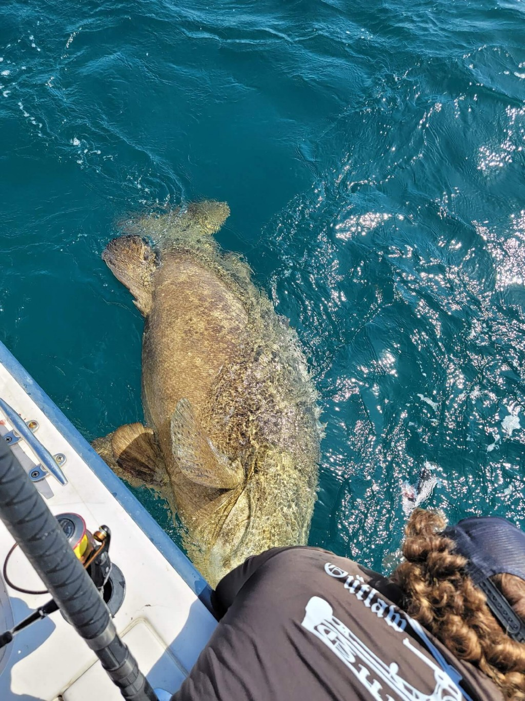 clearwater fl fishing packages