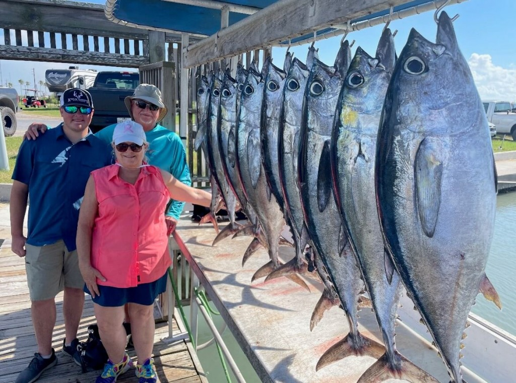 A line up of tuna in South Padre Island