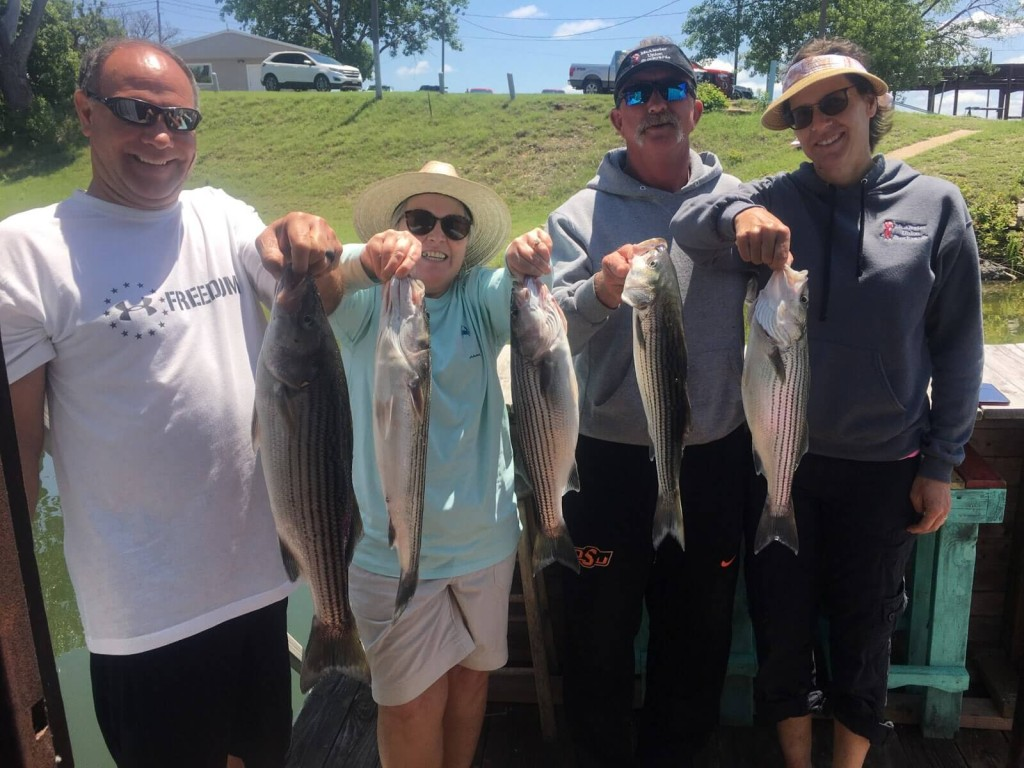 Half Day Bass (AM or PM)   Captain Experiences