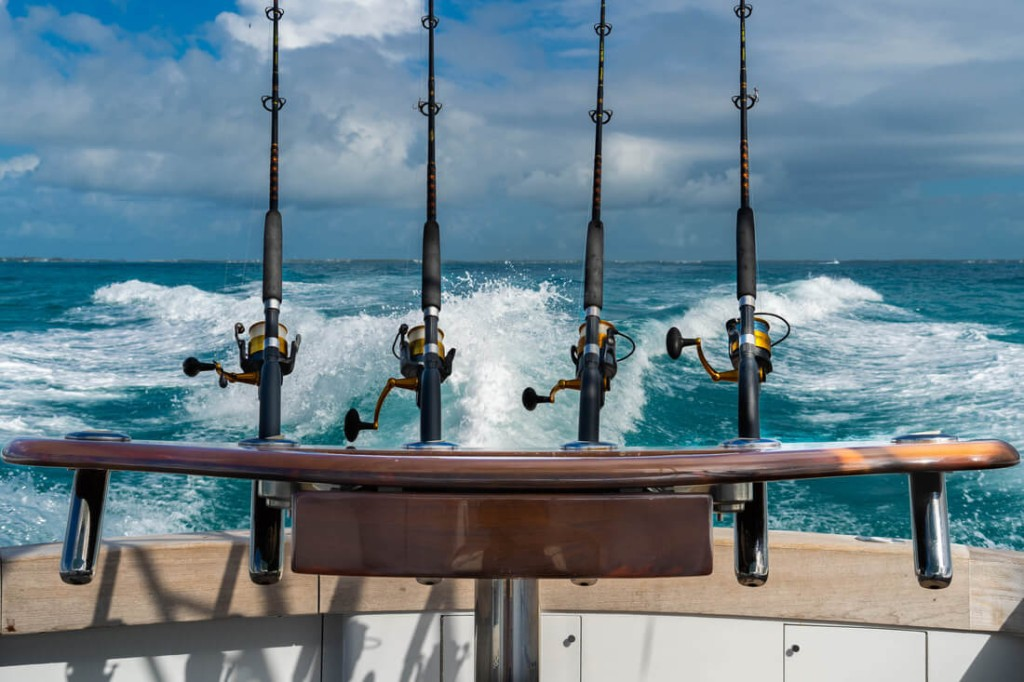 Full Day, 3/4 Day or Half-day Fishing Trip - 37' Buddy Davis | Captain Experiences