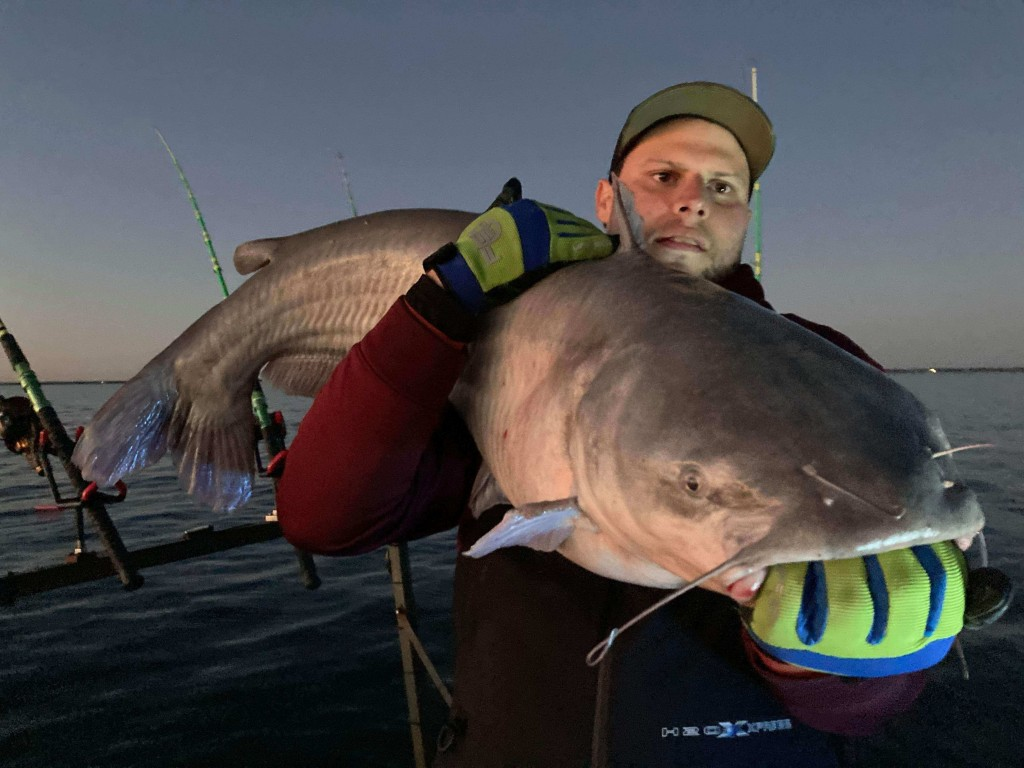 Bardwell Lake Catfish | Captain Experiences