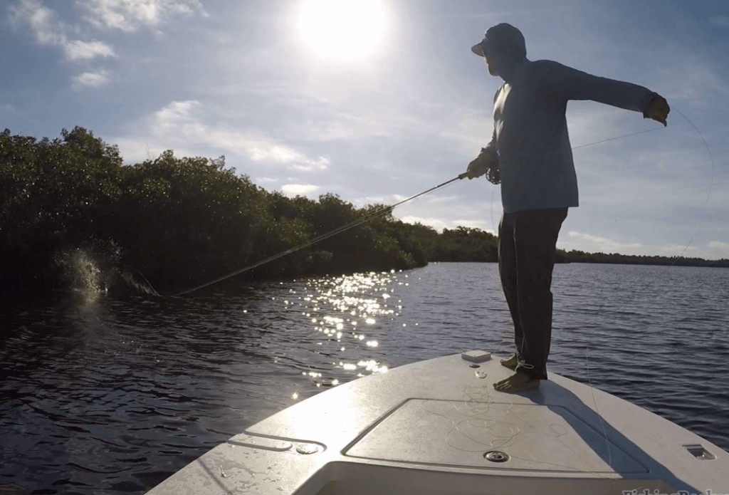 Everglades on the Fly | Captain Experiences