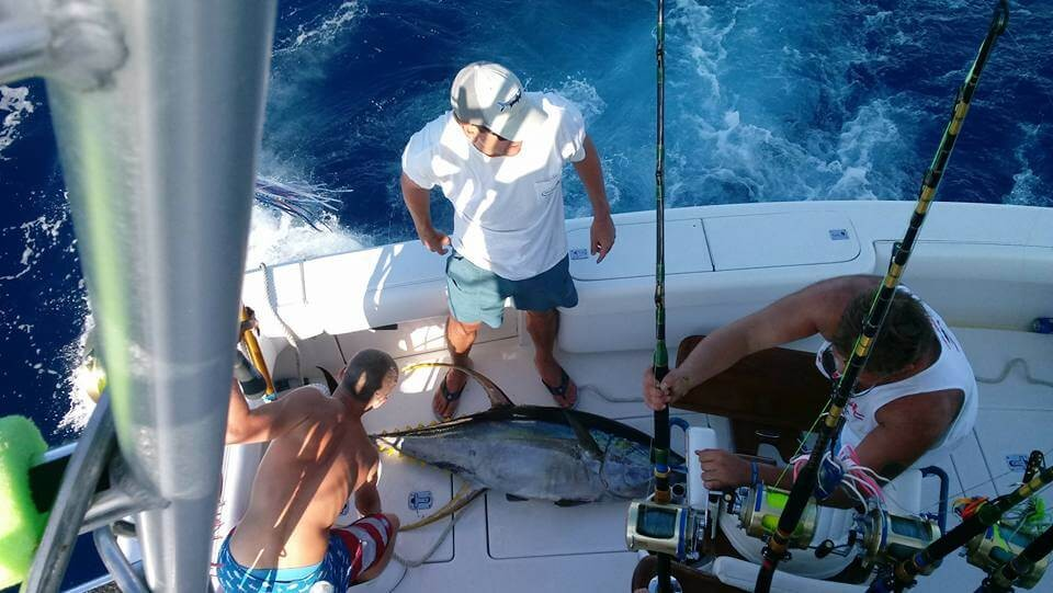 Extended Full Day Trip - Big Game - 32' Albemarle   Captain Experiences
