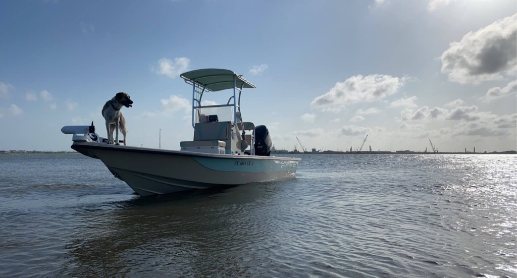 Full Day or Half-day Fishing Trip - 22' Transport   Captain Experiences