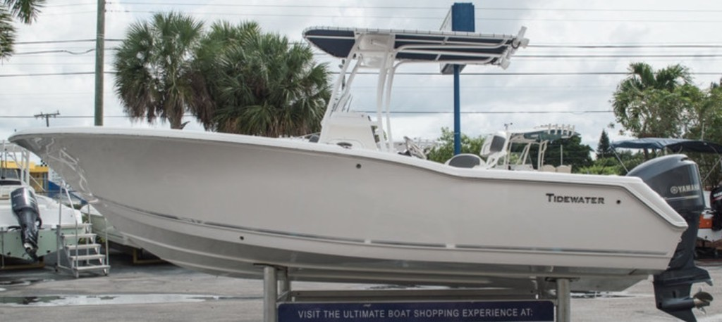 Bay/Jetty - 24' Tidewater Center Console | Captain Experiences