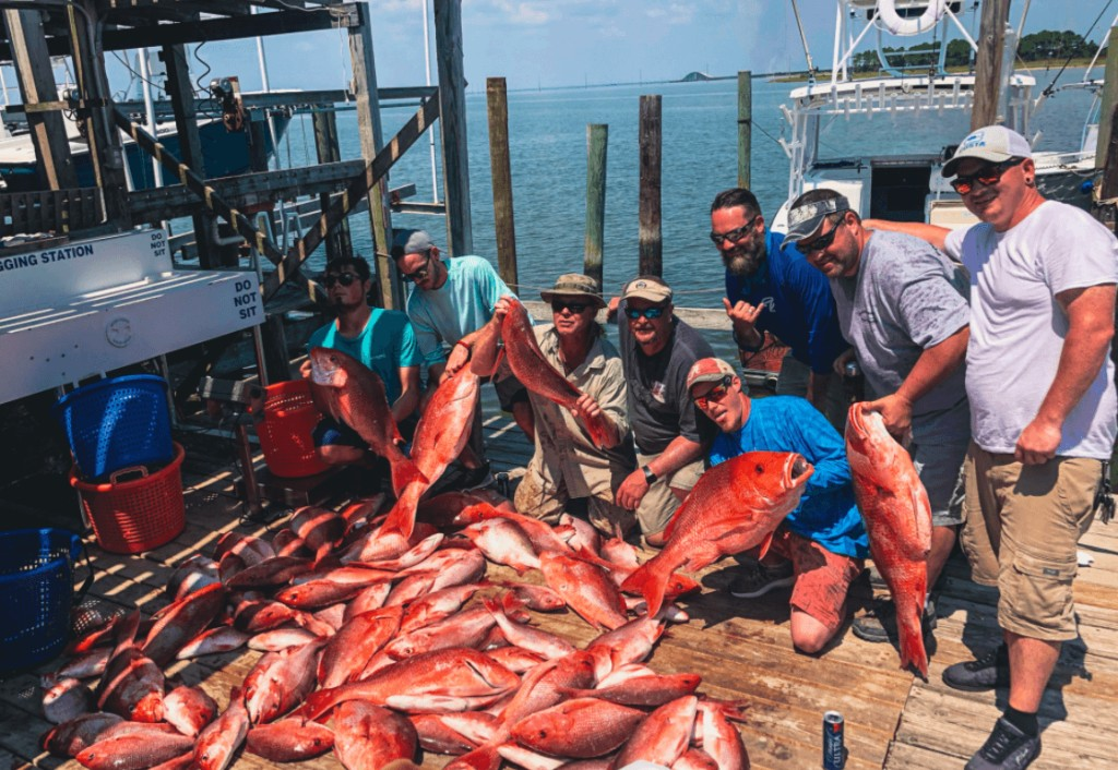 Half Day Nearshore/Offshore - 31' Cape Horn   Captain Experiences