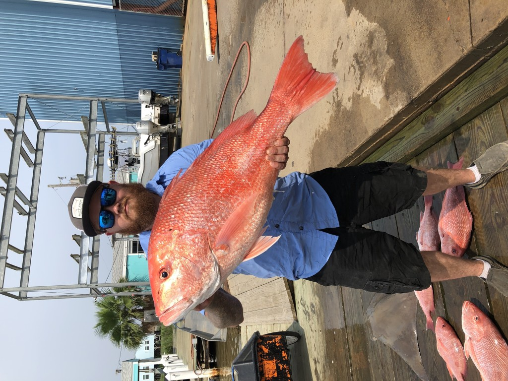 Shared Federal Red Snapper Charter-6 Hour   Captain Experiences