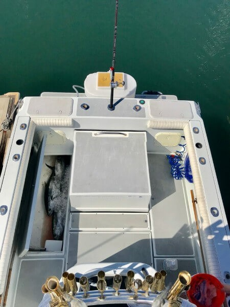 """12-hr. Offshore (24' Cuddy Cabin """"Avery Rose"""") 