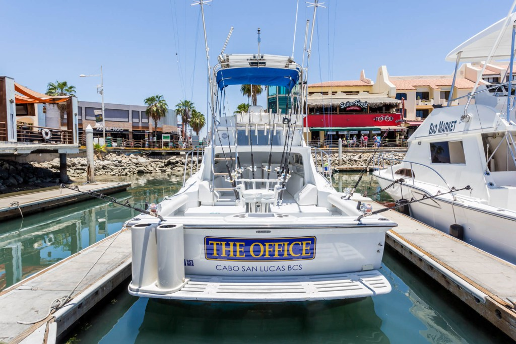 The Office (34') Full-Day or Half-Day Trip   Captain Experiences