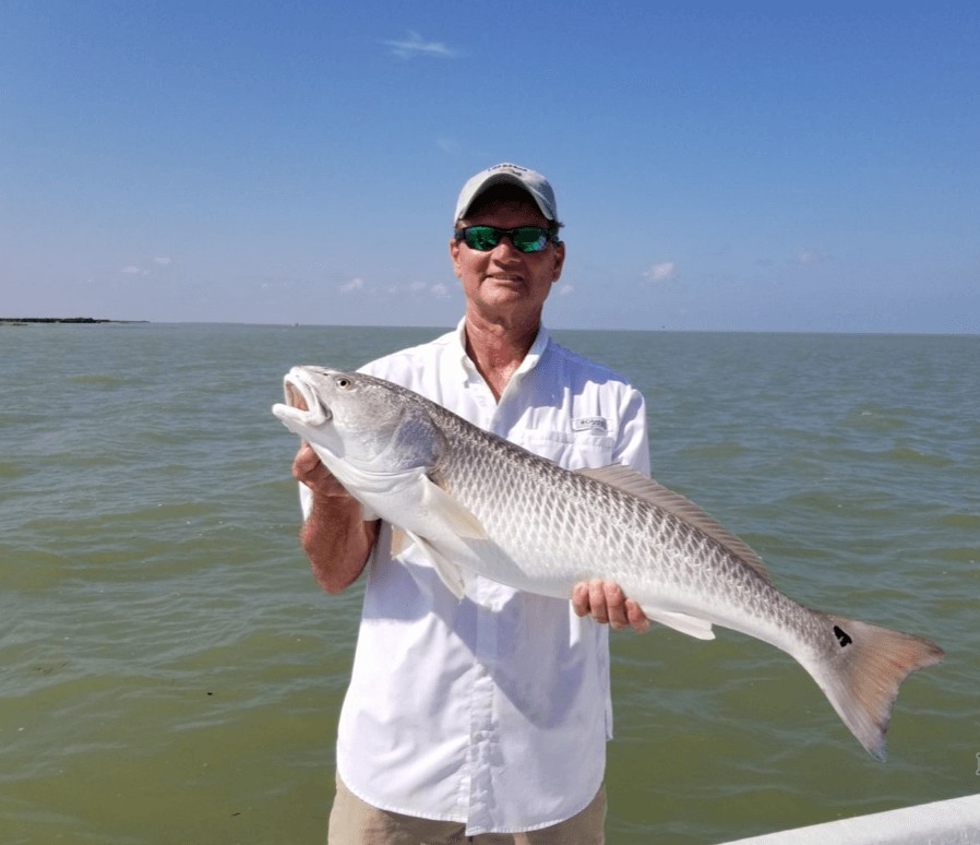 Full Day or Half-day Fishing Trip | Captain Experiences