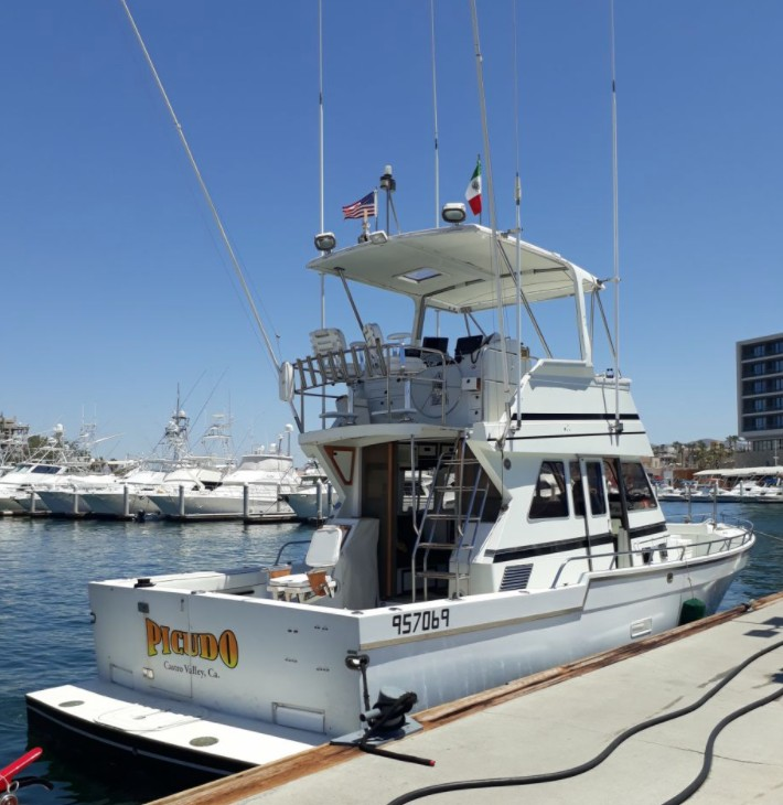 Cabo Trophy Fishing | Captain Experiences