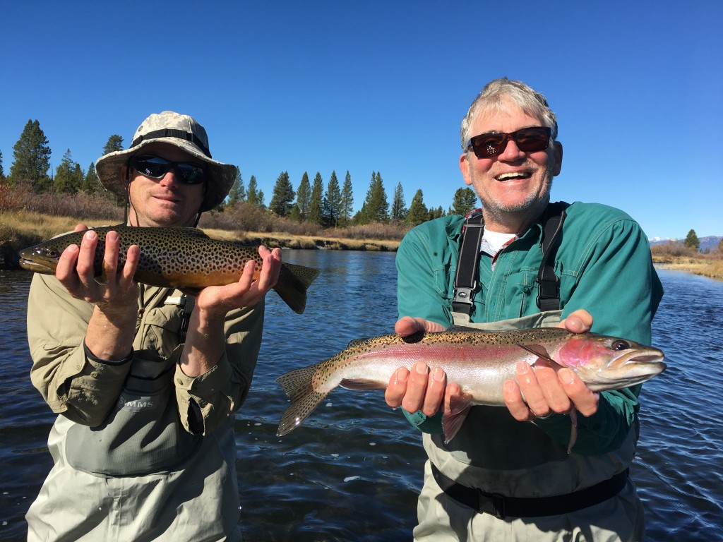 Madison River (Yellowstone NP) Full day or Half day Walk-n-Wade | Captain Experiences