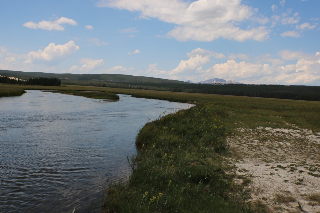 Gibbon River (Yellowstone NP) Walk-n-Wade | Captain Experiences