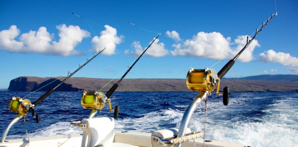 8 hour,  (AM/PM ) 6 or 4 Hour Private Charter | Captain Experiences