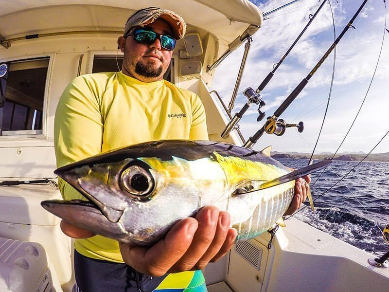 Full day, 3/4 Day or Half Day - Blue Water 35' Riviera | Captain Experiences