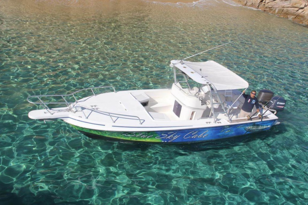 Full day, 3/4 Day or Half Day - Blue Marlin 31' Intrepid | Captain Experiences