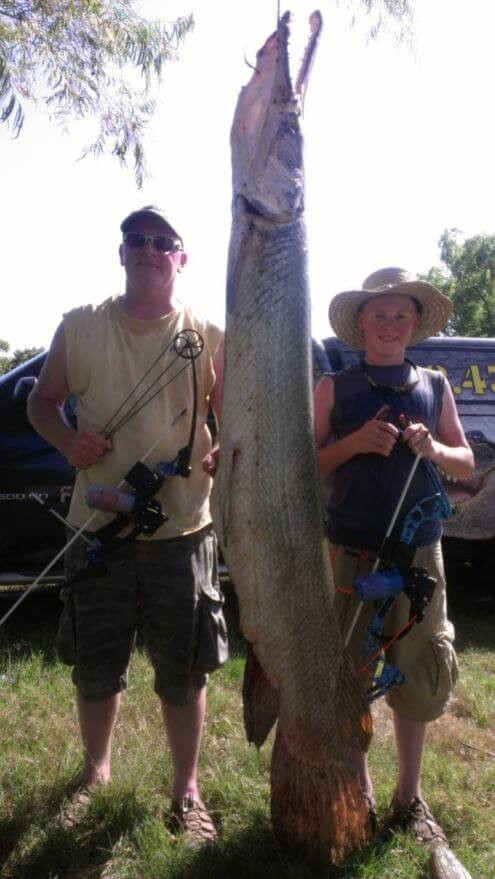 8 hour Alligator Gar Fishing or Bowfishing Trophy Package   Captain Experiences