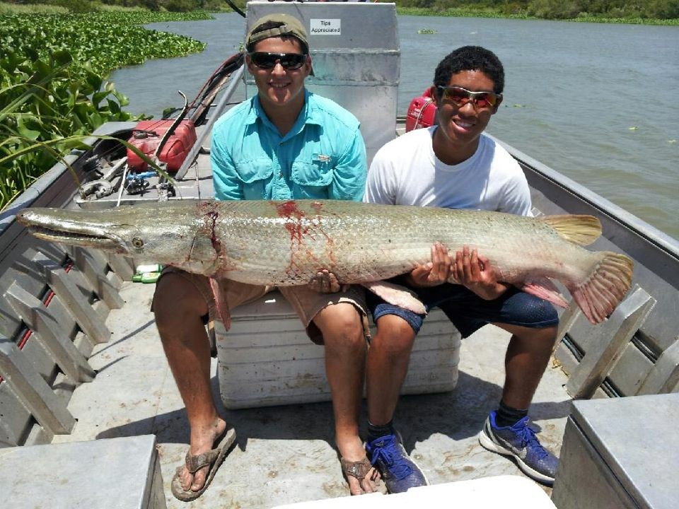 3 Day Alligator Gar Bowfishing Trophy Package | Captain Experiences