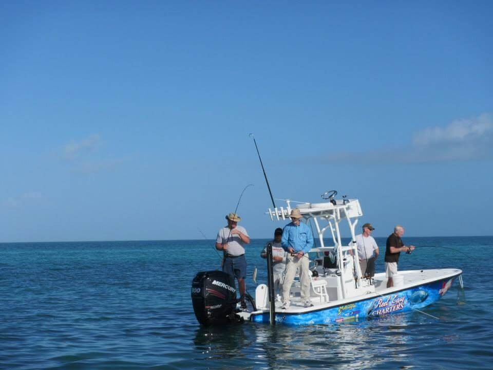 Half Day Trip – Tarpon (Sunset) Seasonal | Captain Experiences