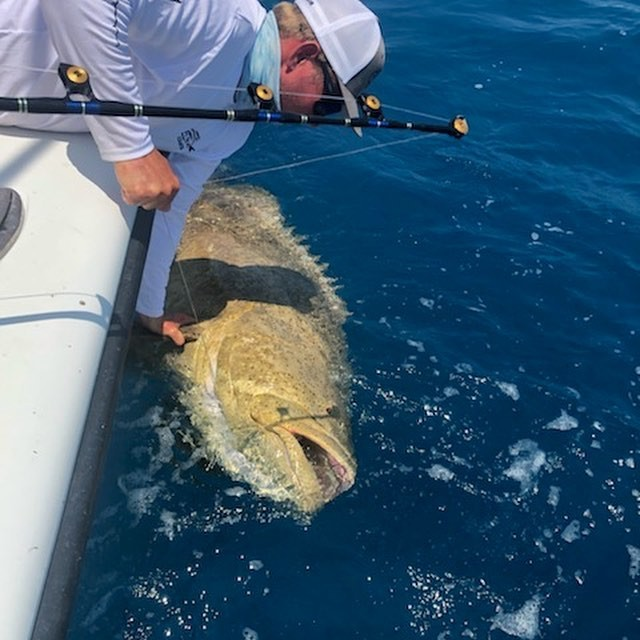 Key West Exotic Reef Fishing | Captain Experiences