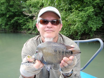 Hill Country Bass or Trout on the Fly | Captain Experiences