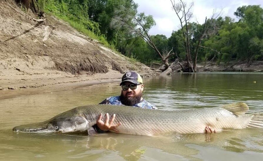 Alligator Gar Fishing Near Dallas | Captain Experiences