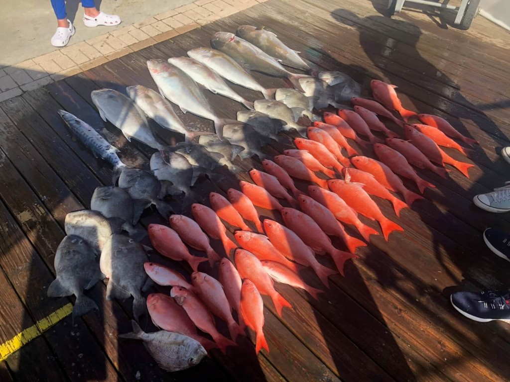 Extended Full Day, Full Day or ( Half-day AM/PM Option )  Fishing Trip   Captain Experiences